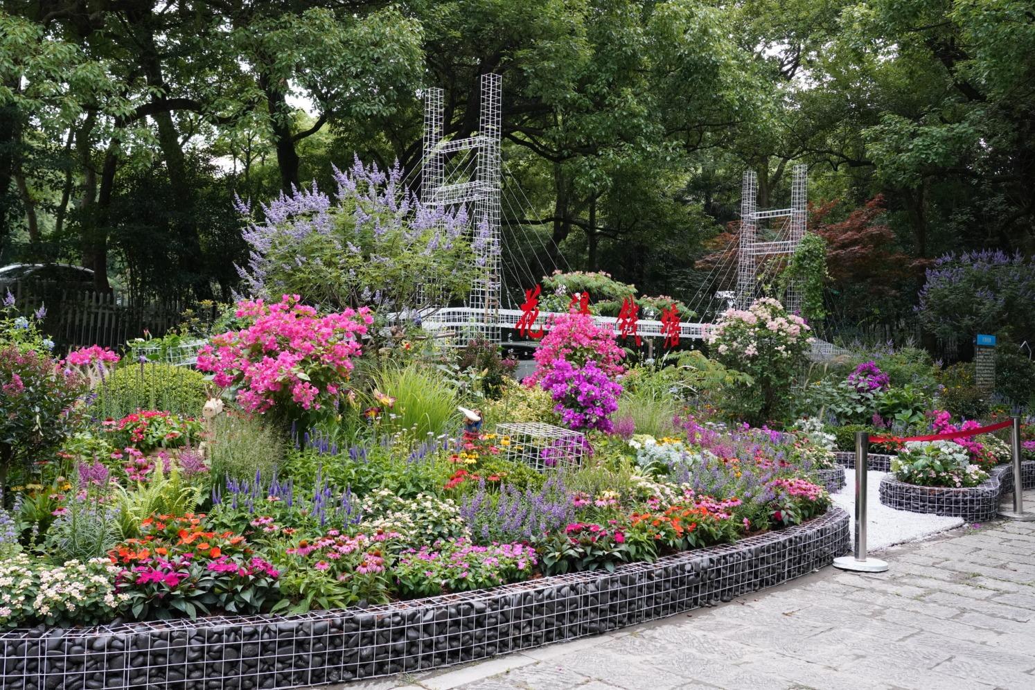 视频 | 杭州市园林艺术精品展推五大展区 向全国展示园林艺术经验