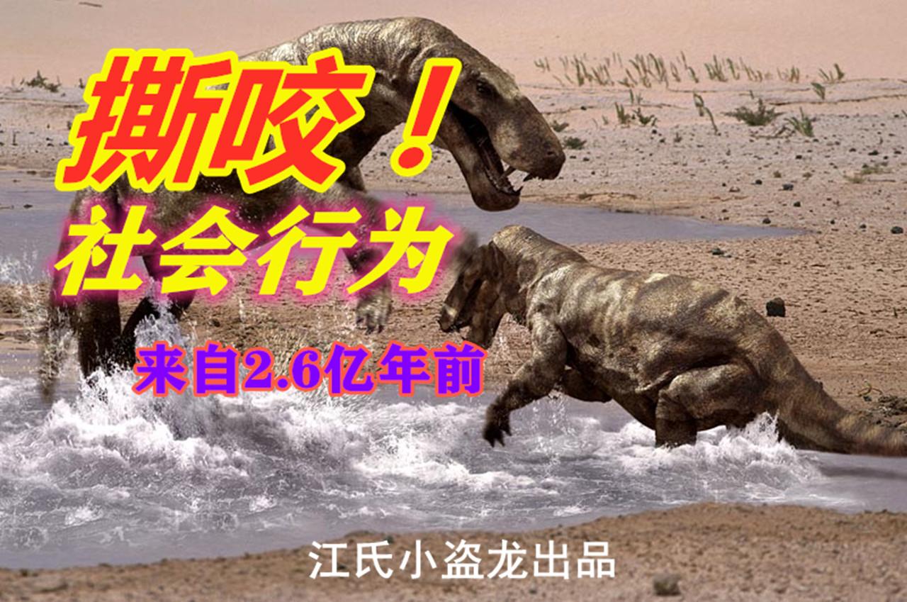 不是猎杀为何还撕咬同类 2.6亿年前化石证据揭秘真相