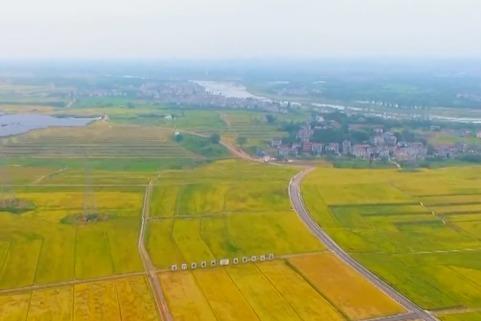 视频 | 浙江发布首个垦造耕地项目管理办法 加强全流程管理