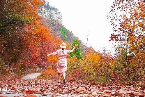 """""""疫""""去秋来,一起相遇云台山最靓丽的姿态"""
