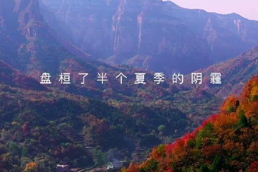 赏红叶、观云海,秋天的美太行大峡谷都有